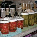 Fermenting salsa and dill pickles!!  Yummmm!