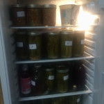Our extra fridge of fermented pickles and salsa, etc